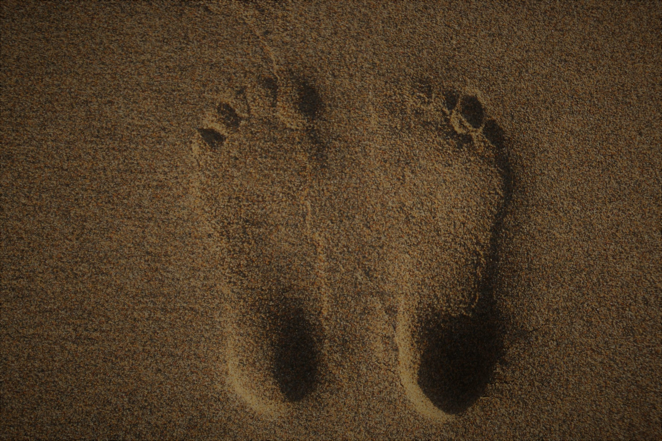 Two foot imprints in the sand